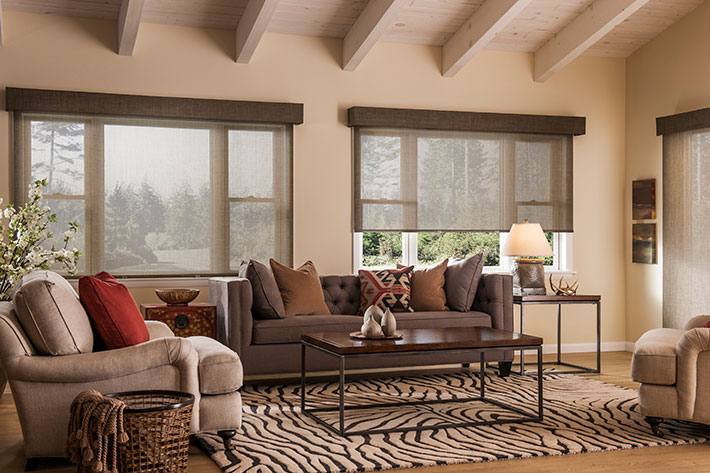 Boise Roller Shades Window Coverings Amp Shades