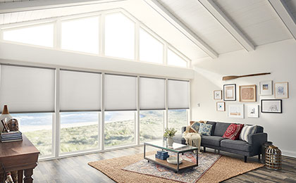 Products Boise Window Coverings Blinds Amp Shades